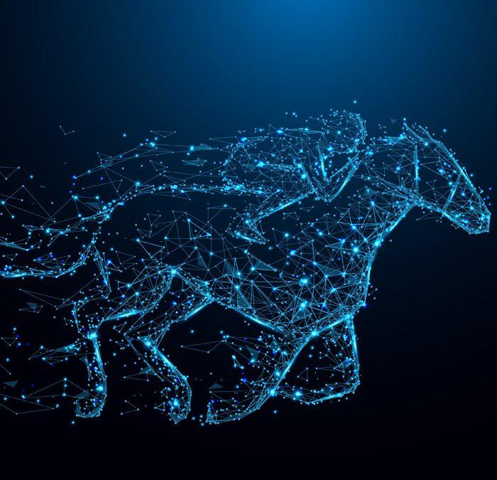 Hochleistungs-Kältekammern für den Pferdesport